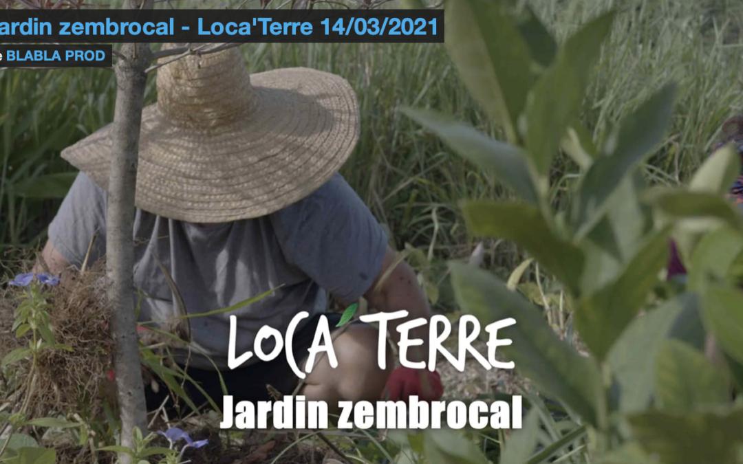 Le jardin expérimental dans Loca'Terre !…