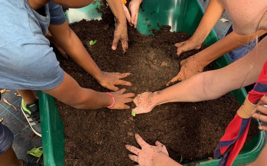 C'est l'heure du bilan pour l'école du jardin planétaire…